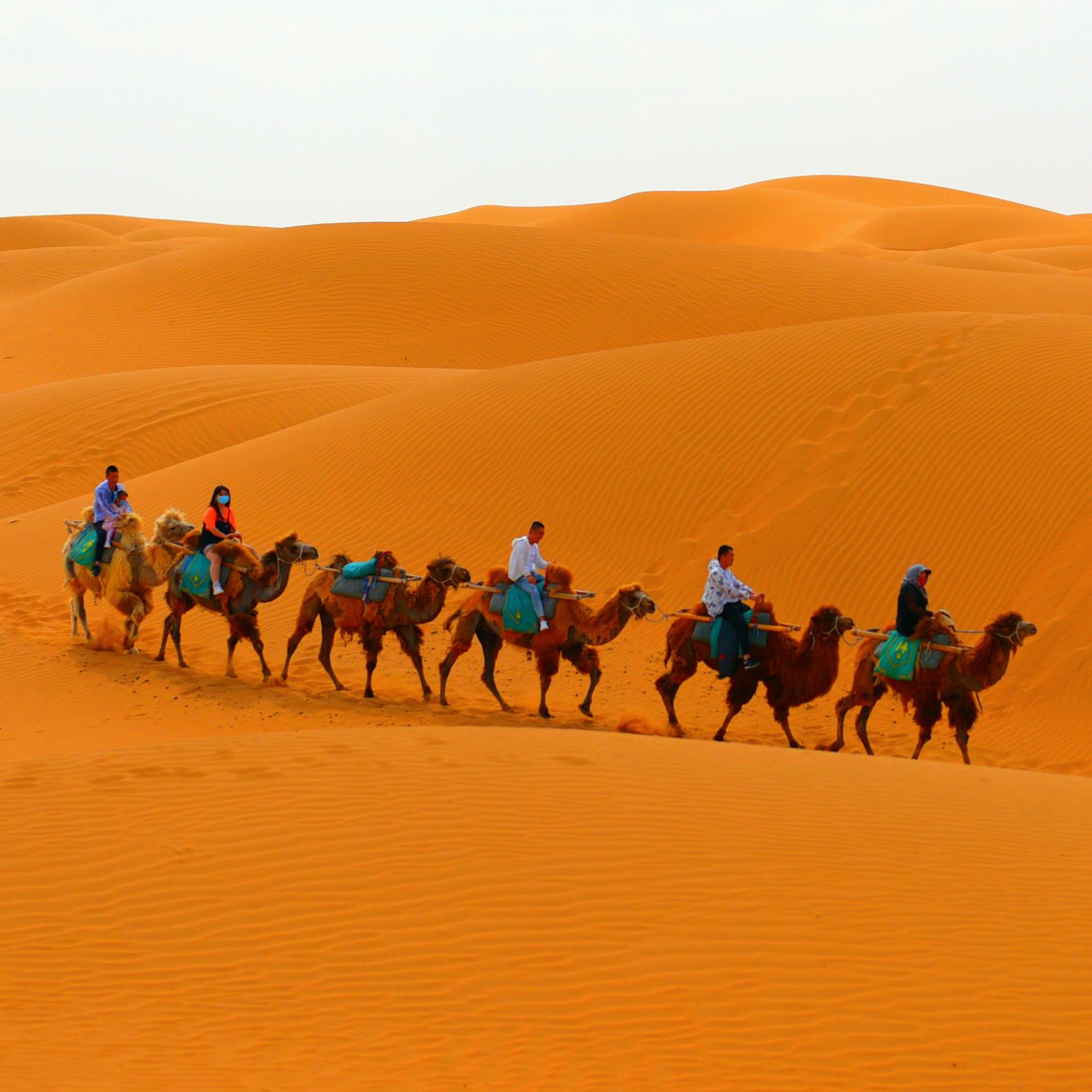 腾格里沙漠小团体穿越戈壁沙漠一日游(含沙漠娱乐项目)