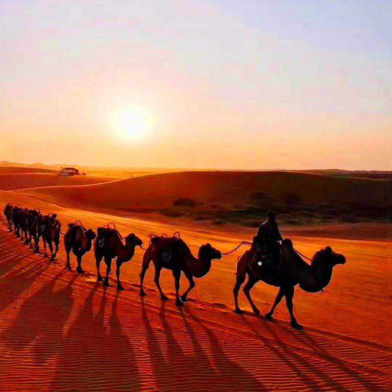 宁夏银川旅游中卫腾格里沙漠星空露营徒步越野车骆驼滑沙两天一晚